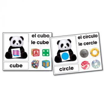 Shape Bears Photographic Learning Cards KE845024
