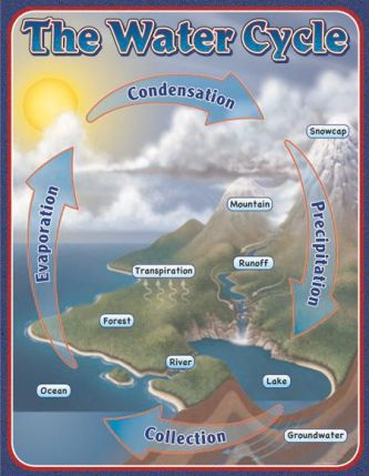 The Water Cycle Chart CD114053