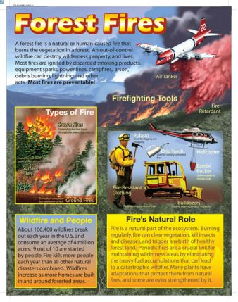 Forest Fires Chart CD414006