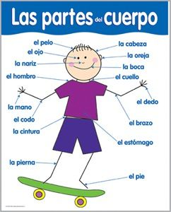 Spanish Parts of the Body Chart CTP5798