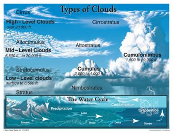 Types of Clouds Chart CD5910