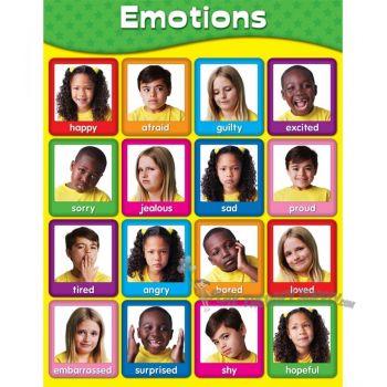 Emotions Chart CD114055
