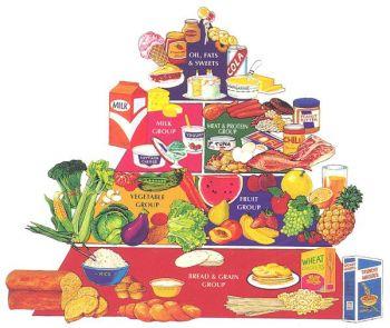 My Food Pyramid Pre-Cut Felt Set